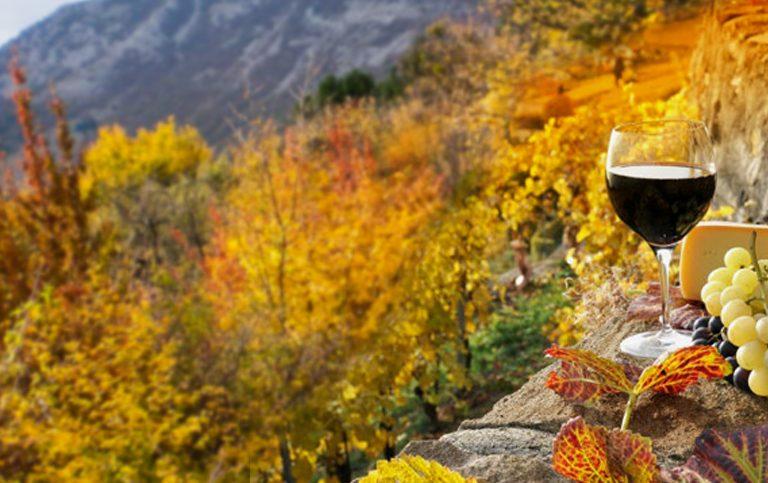 Фестиваль молодого вина и гастрономии «#Ноябрьфест» в Крыму